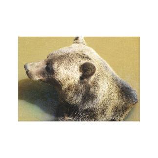 Grizzlybjörn Canvastryck