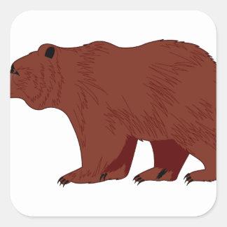 Grizzlybjörn Fyrkantigt Klistermärke