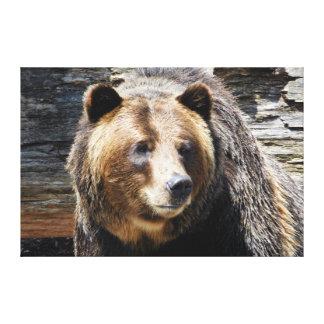 Grizzlybjörnen profilerar den slågna in canvastryck