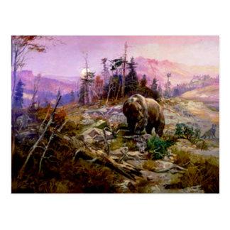 Grizzlyen Vykort