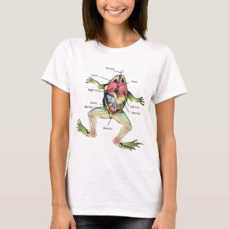 Groda den grafiska illustrationen för anatomi t shirts