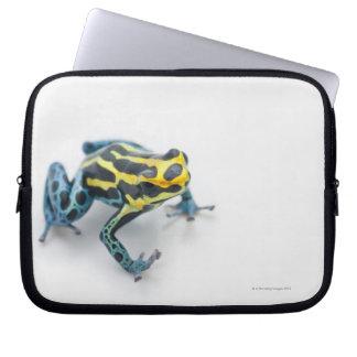 Groda för svart-, gult- och blåttgiftpil laptop fodral