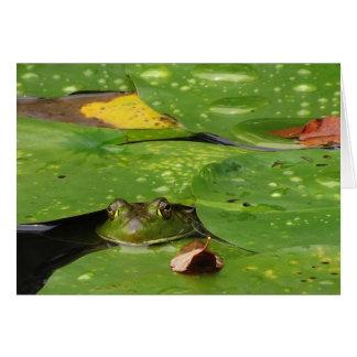 Groda- och liljadynortack hälsningskort