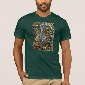 Grodor - Ernst Haeckel T-shirt
