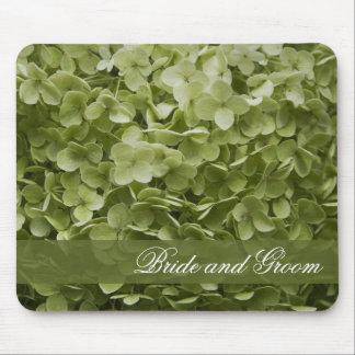 Grön Annabelle vanlig hortensia som gifta sig Musmatta