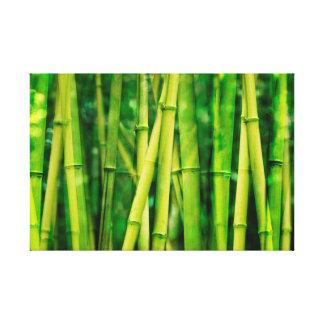 Grön bambu canvastryck