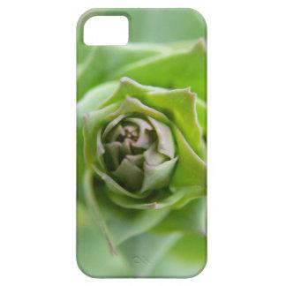Grön Fern iPhone 5 Fodraler