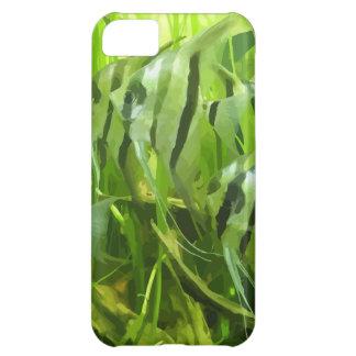 Grön fisk iPhone 5C fodral