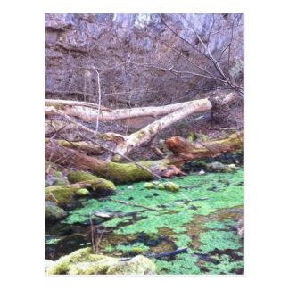 Grön grotta vykort