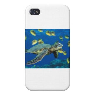 Grön havssköldpadda iPhone 4 cases