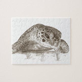 Grön havssköldpaddateckning pussel