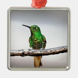 Grön HummingbirdCocora dal Colombia Julgransprydnad Metall