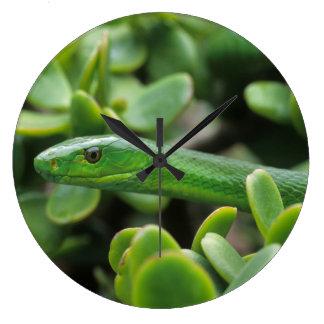 Grön Mamba för östra (dendroaspisen Angusticeps) Stor Klocka