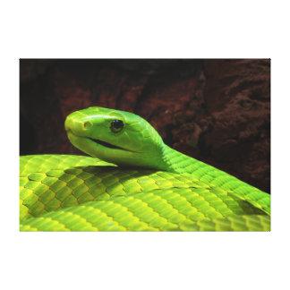 Grön MambaDendroaspis Angusticeps för östra Canvastryck