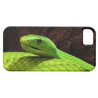 Grön MambaDendroaspis Angusticeps för östra iPhone 5 Case-Mate Cases