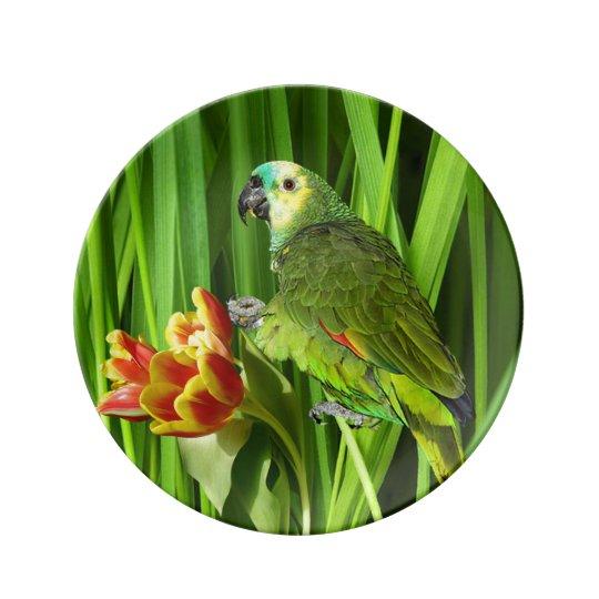 Grön natur med papegojan porslinstallrik