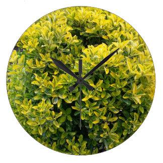 Grön och gul buske stor klocka