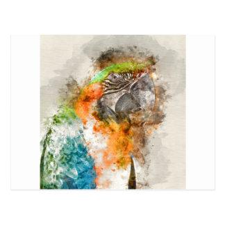 Grön och orange Macawfågel Vykort