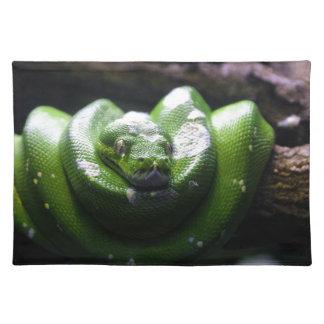 Grön orm bordstablett