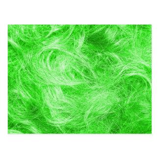 Grön päls vykort