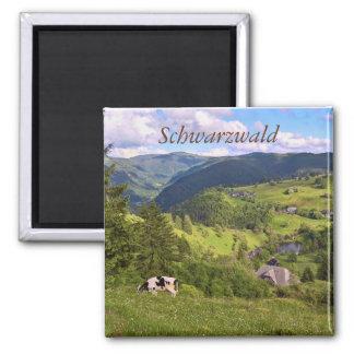gröna ängar och en ko med panorama beskådar magnet