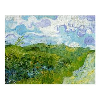 Gröna vetefält av Van Gogh Vykort