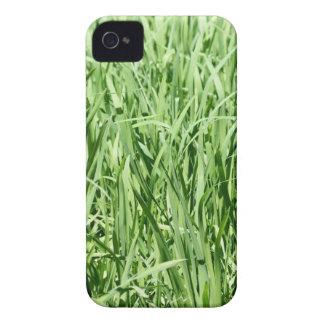 Grönt gräs iPhone 4 hud