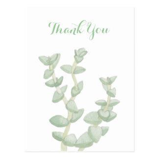 Grönt suckulent tack vykort