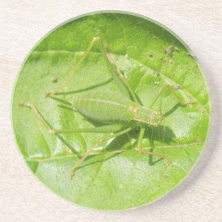 Grönt syrsakamouflageunderlägg underlägg sandsten