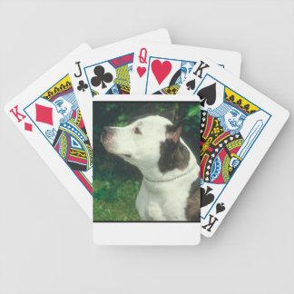 Groptjurhund som leker kort spelkort