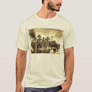 Grottaträdgårdar, trevlig frankrikevintage 1910 tee shirts