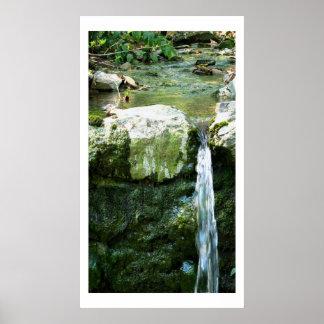 Grottoen fjädrar 2 som konst fotograferar poster