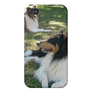 Grovt fodral för Collies iPhone4 iPhone 4 Skal