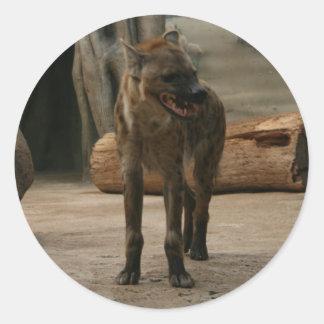 Grrr Hyenaklistermärke Runt Klistermärke