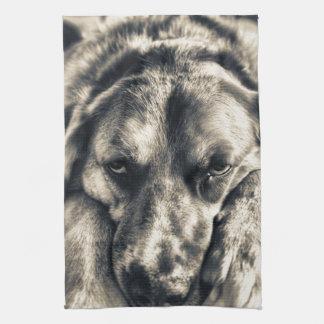 Grumpy handduk för Tea för hundansiktekök Kökshandduk