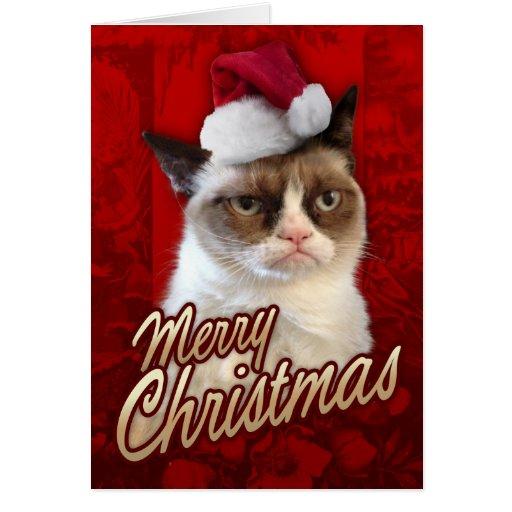 Grumpy katt för god jul kort