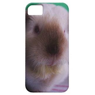 Grungy försökskaniniphone case iPhone 5 skydd