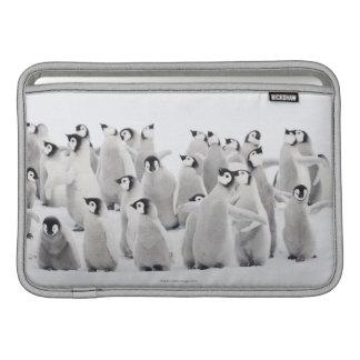 Grupp av kejsarepingvin (Aptenodytesforsterien) Sleeve För MacBook Air