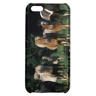 Grupp av miniatyrföl iPhone 5C fodral