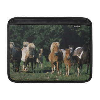 Grupp av miniatyrföl MacBook sleeve