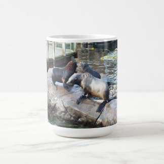 Grupp av pälssälar kaffemugg