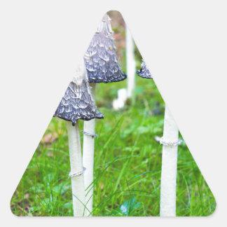 Gruppbläck plocka svamp nära skogvägen i nedgång triangelformat klistermärke