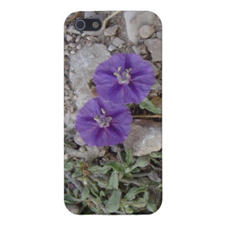 Grus blommar i Del Rio iPhone 5 Fodral