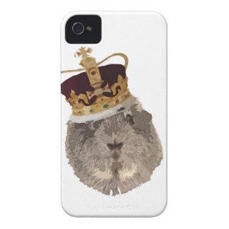 Guineapig i en krona iPhone 4 skal