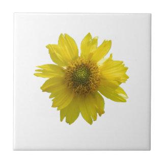 Gul blomma kakelplatta