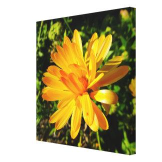 Gul blomma slågen in kanfas canvastryck