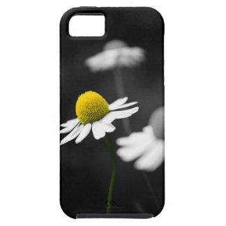 Gul Camomile iPhone 5 Case-Mate Cases