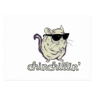 Gul Chinchillin Chinchilla Vykort