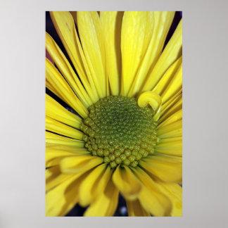 Gul daisy på vertikalt tryck för kanfas affisch