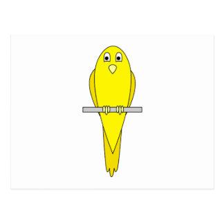 Gul fågel. Kanariefågel. På White. Vykort